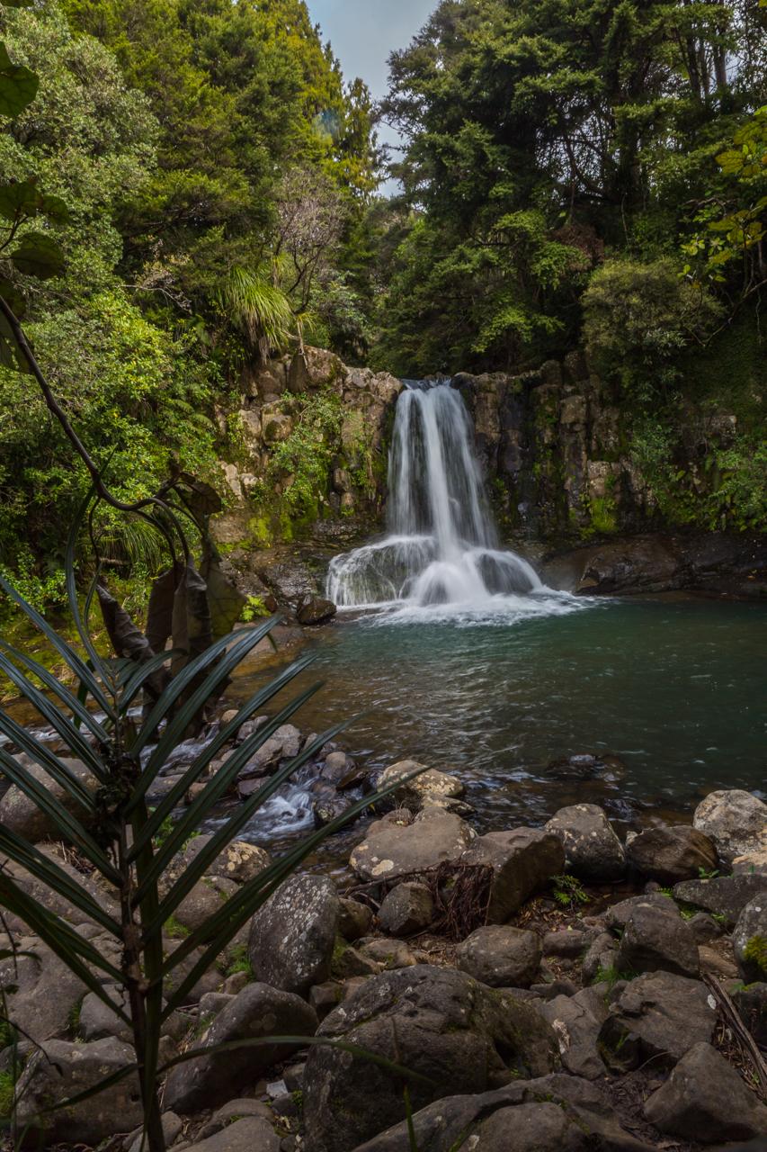 Neuseeland - Nordinsel - Coromandel - Waiau Falls