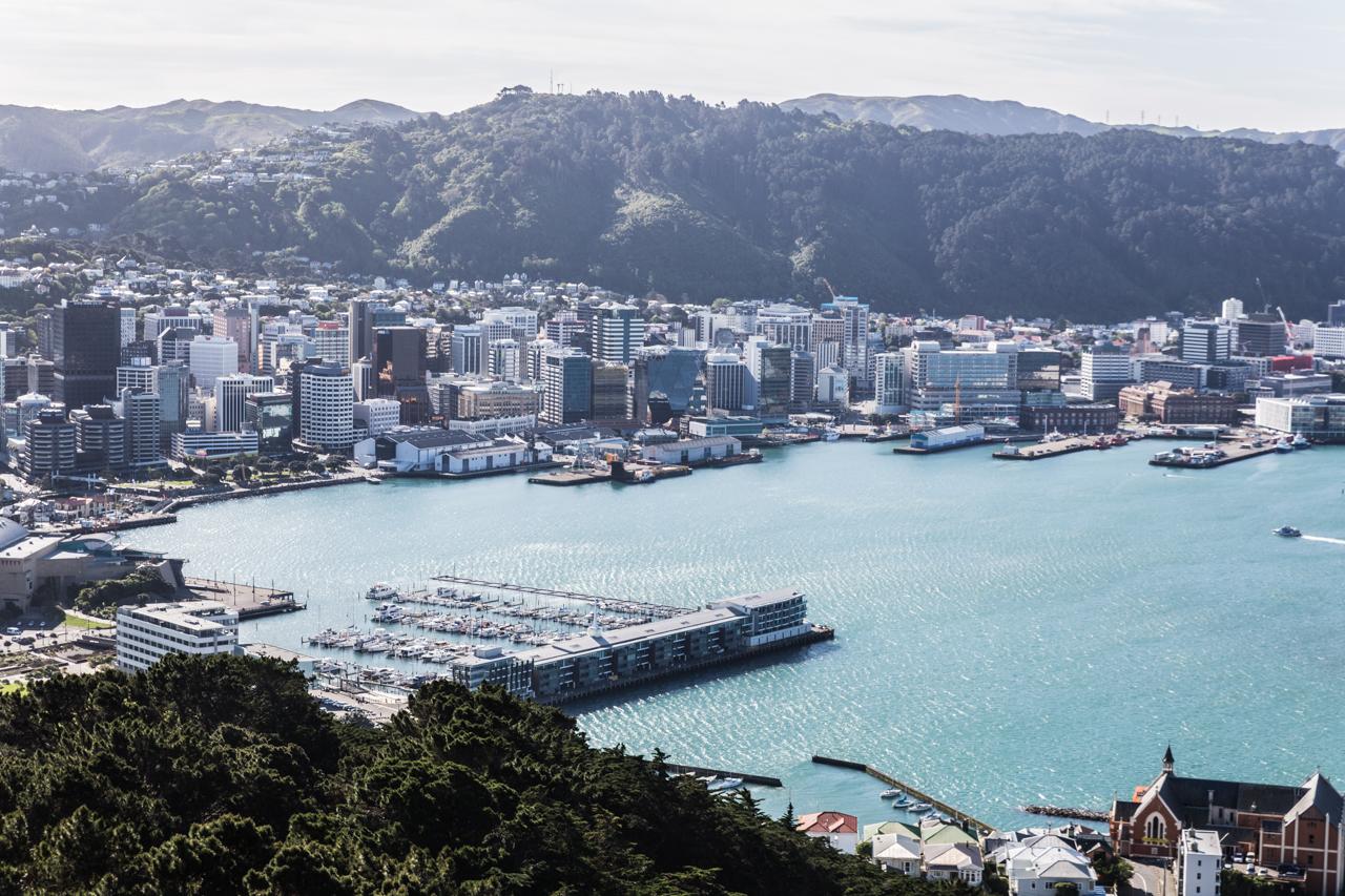 Neuseeland - Nordinsel - Wellington - vom Mt Vicotria aus