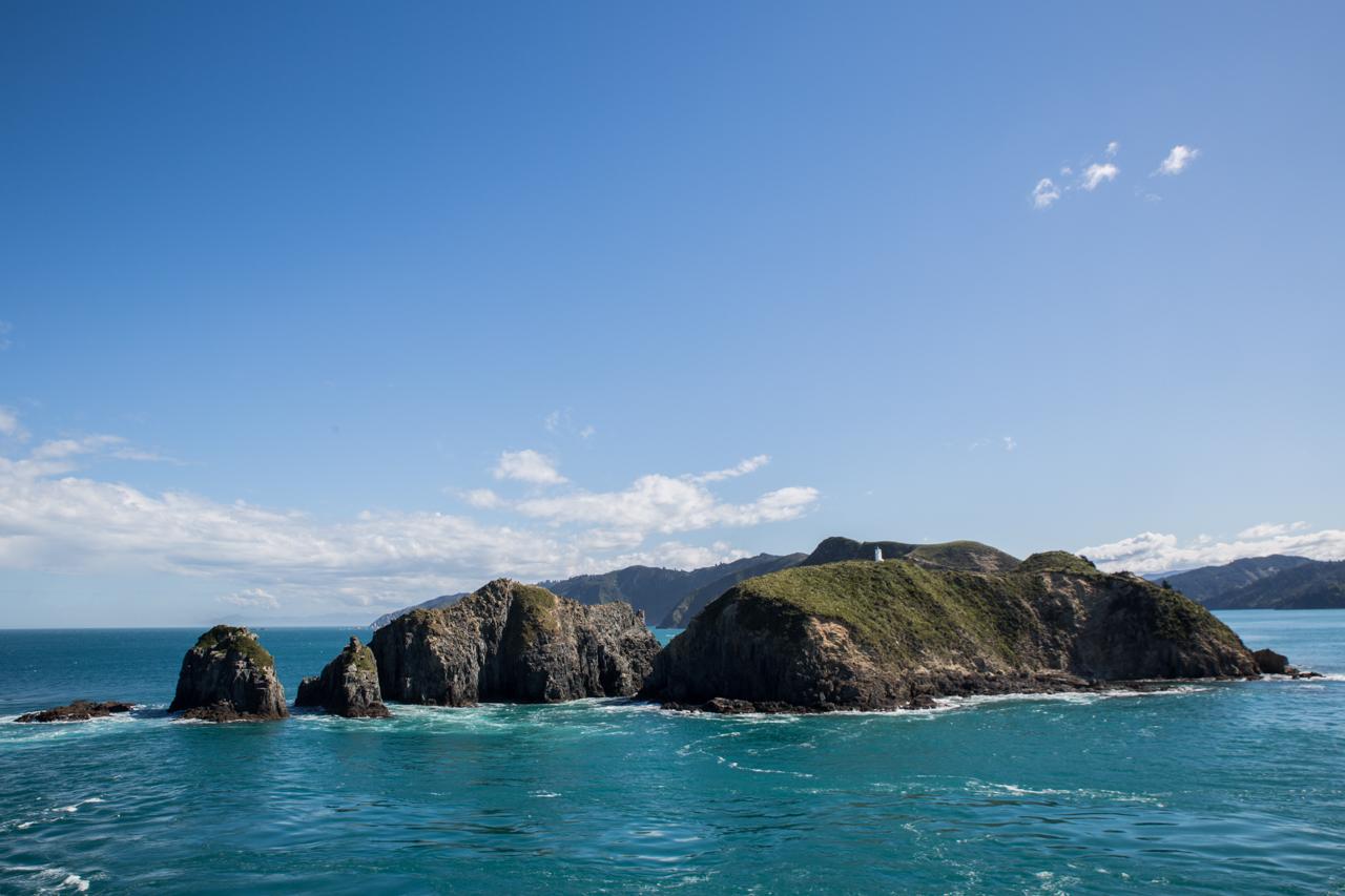 Neuseeland - mit der Fähre von Wellington nach Picton