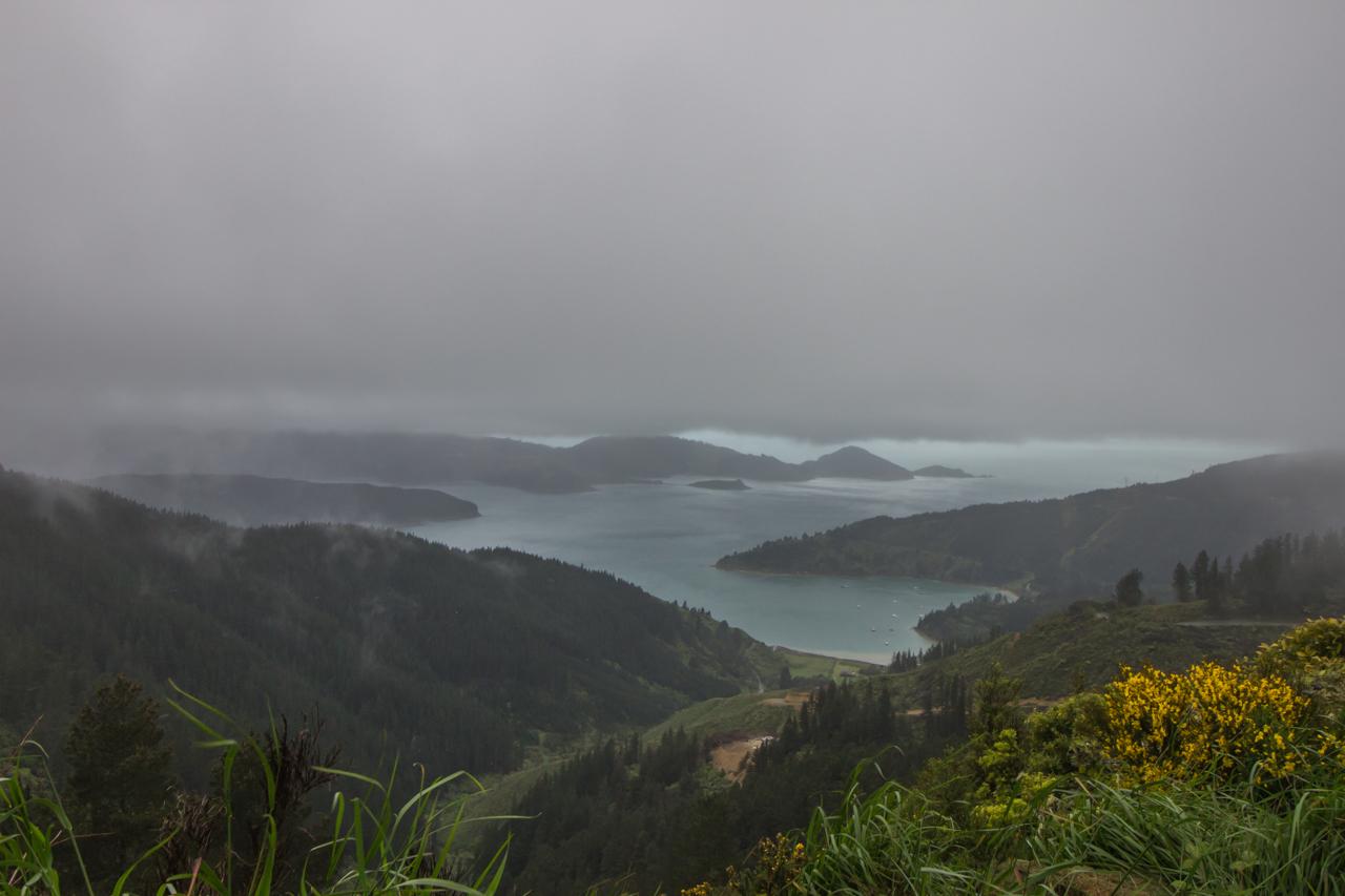 Neuseeland - Queen Charlotte Sound