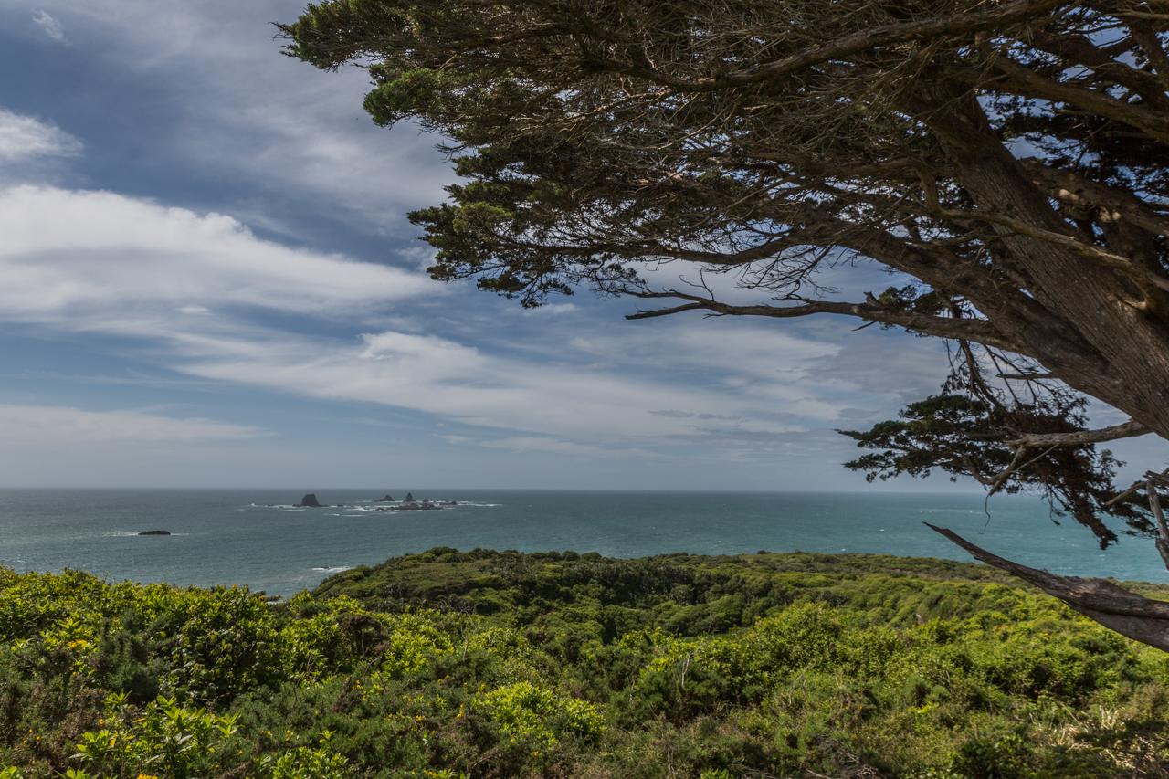 Neuseeland - cape foulwind lighthouse