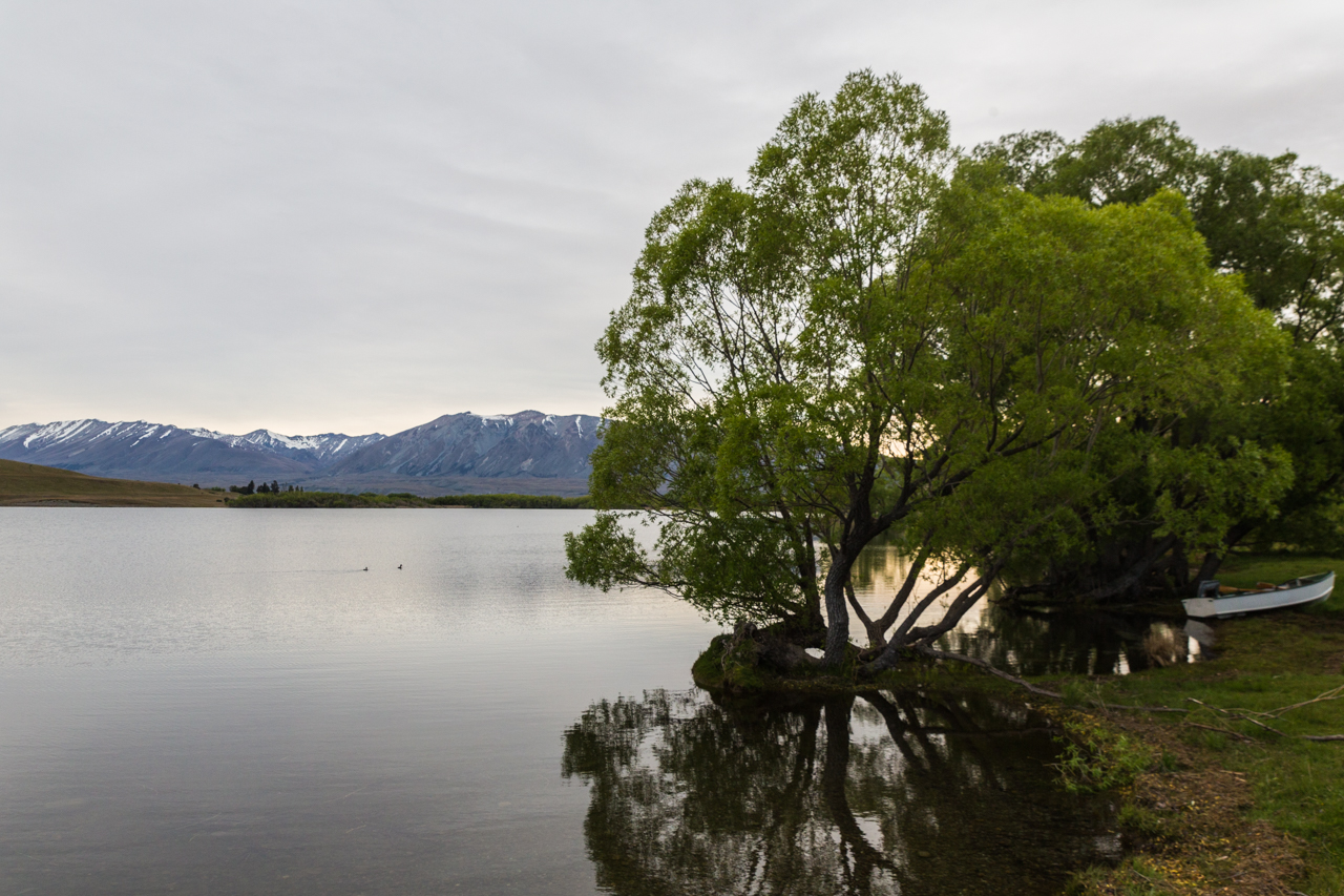 Neuseeland - Lake Alexandrina