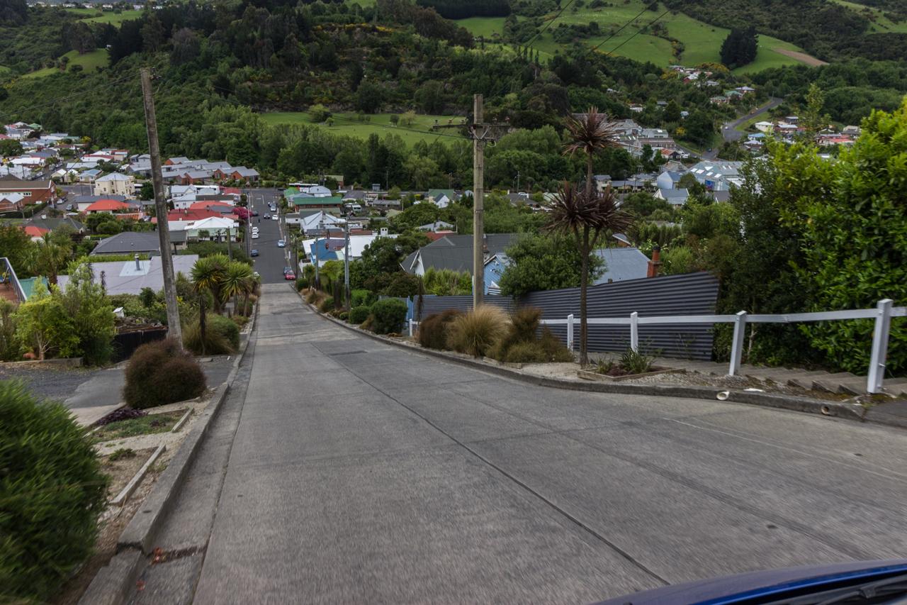 Neuseeland - Dunedin - die steilste Straße der Welt