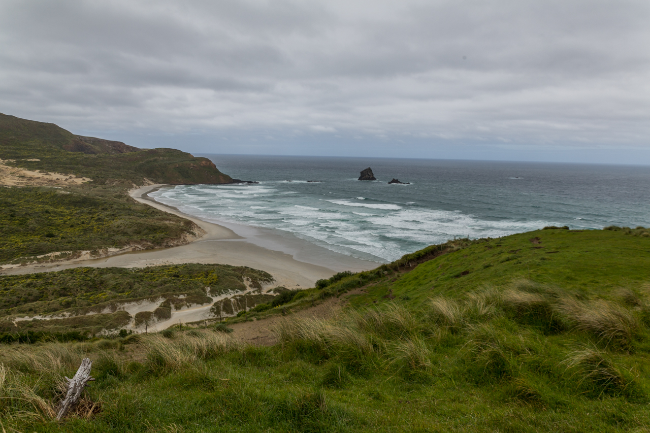 Neuseeland - Otago Peninsula - Sandfly Bay
