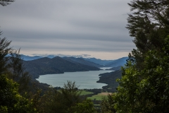 Neuseeland - Queen Charlotte Track
