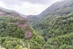 La Palma - Los Tilos