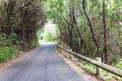 La Palma - Alte Landstraße im Norden