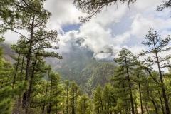 La Palma - Mirador de la Cumbrecita