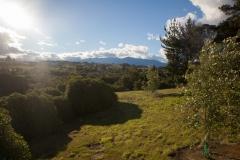 Motueka - Neuseeland