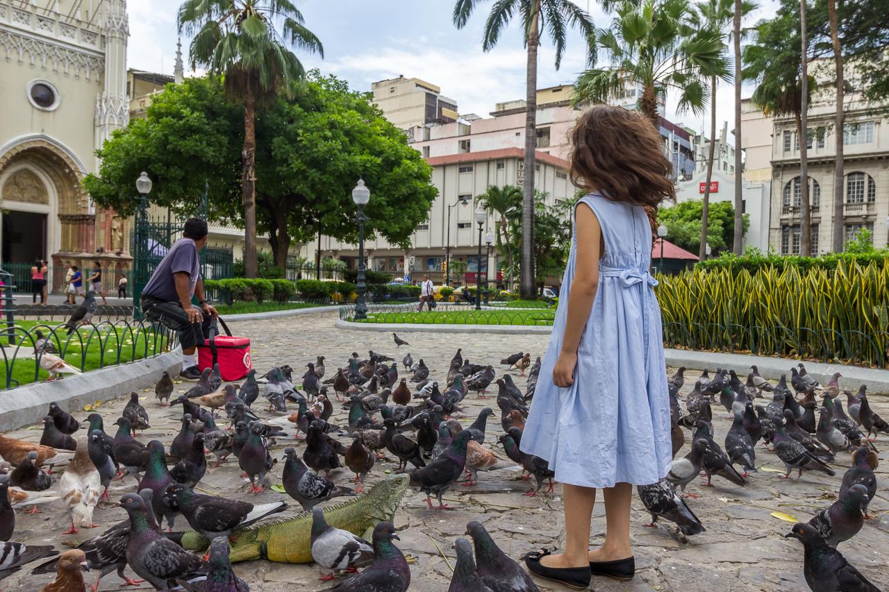 Guayaquil - Parque Seminario