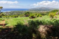 Osterinsel - Vulkan Rano Kau - im Tal ist das Dorf Hanga Roa erkennbar