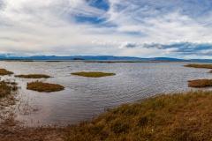 El Calafate: Laguna Nimez