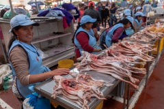 Riobamba - Meerschweinchen gefällig?