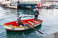 Hafenrundfahrt - der Captain holt erstmal das Schiff