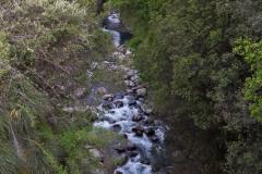 Der Rio Claro.