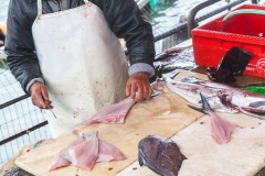Dieser alte Herr hat Fische im Akkord ausgenommen und entschuppt.