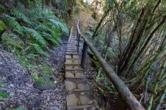 Im Nationalpark Huerquehue - teilweise befestige Wege