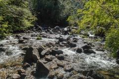 Im Nationalpark Huerquehue - ein Besuch lohnt sich