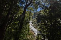 Im Nationalpark Huerquehue - kommt man nicht so direkt ran