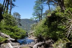 Im Nationalpark Huerquehue - dahinter ist der Wasserfall