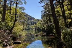 Im Nationalpark Huerquehue - Laguna Chico auf dem Hochplateau