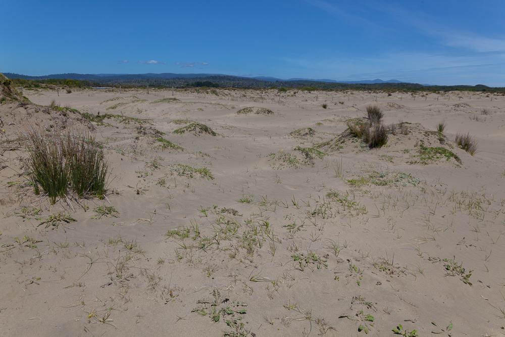 Chepu - eine schöne Landschaft