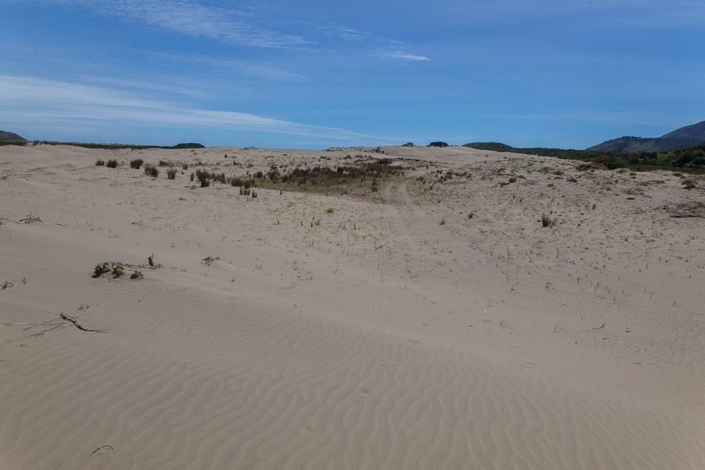 Chepu - weit und breit nur Sand und ein wenig..