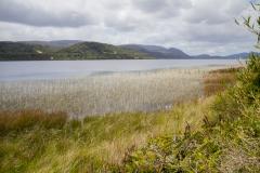 Nationalpark Chiloé - Blick auf den See