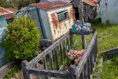 """Chiloé - Cailin - aber es gibt auch """"normale"""""""
