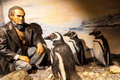 Ushuaia - Galeria Tematica Historia Fueguina - Charles Darwin war bei der zweiten Fahrt der HMS Beagle von 1831 bis 1835 auch mit an Board