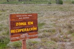 Ushuaia - an der bahia encerrada - eine Art Naturschutzgebiet
