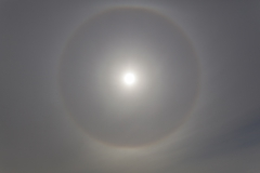 West Point Island - 22 Grad Eis-Halo :-)