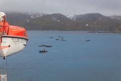 Right Whale Bay: Zodiacs werden zu Wasser gelassen
