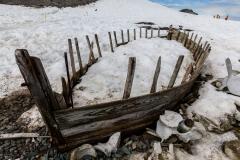 D'Hainaut Island: Überreste der Walfänger