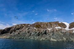 Cierva Cove