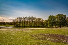 Bonn - Rheinauenpark